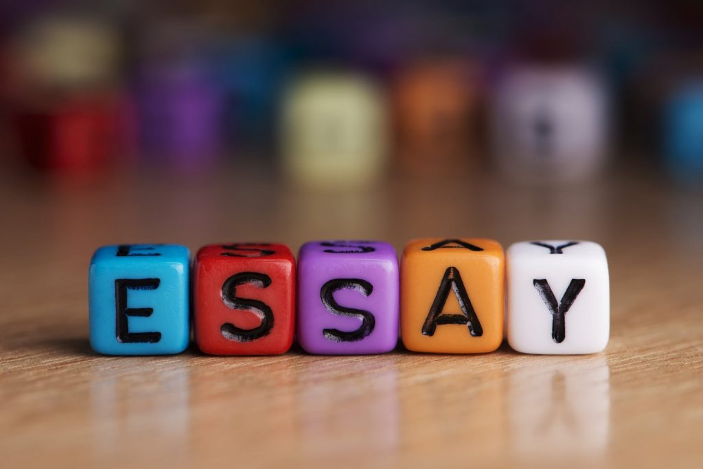 accounting essay writing
